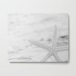 Starfish in Black and White Metal Print
