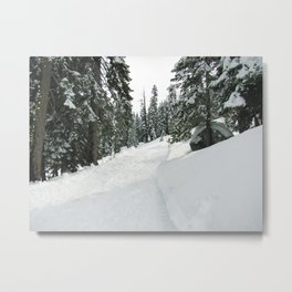 Tahoe 0370 Metal Print