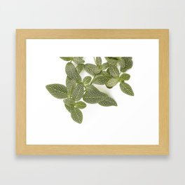 Nerve Plant Framed Art Print