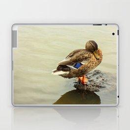 The Mallard Duck Laptop & iPad Skin