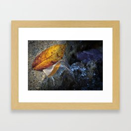 Leaves and Flowing Water Framed Art Print