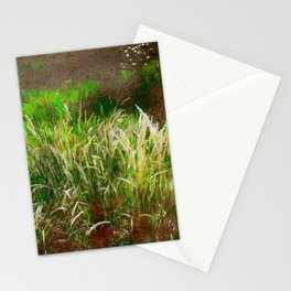 Wild Grasses, Northland, Aotearoa Stationery Cards