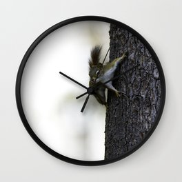 Baby Red Squirrel Wall Clock