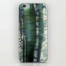 birch trees iPhone & iPod Skin