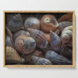 Netted dog whelks Serving Tray