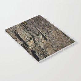 Rocky Defense Notebook