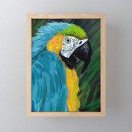 Blue & Gold Macaw Framed Mini Art Print
