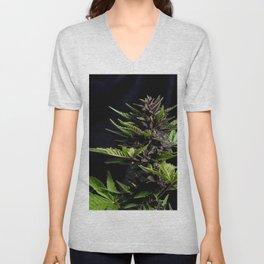 Purple Cannabis Plant Unisex V-Neck