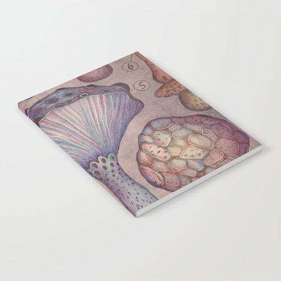 FUNGI II Notebook