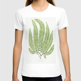 Adiantum Pubescens from Ferns British and Exotic (1856-1860) by Edward Joseph Lowe T-shirt