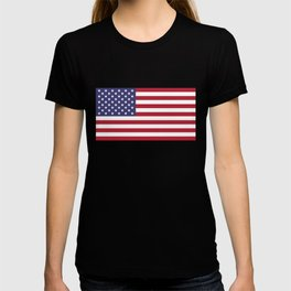 National flag of USA - Authentic G-spec 10:19 scale & color T-shirt
