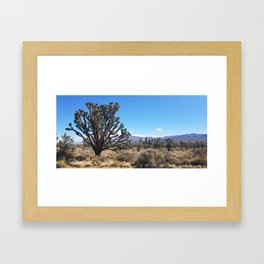 Large Joshua Tree Framed Art Print