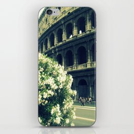 Summer in the Center iPhone Skin
