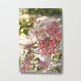 Tropical Blooms Metal Print