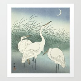 Herons in Shallow Water, Ohara Koson, 1934 Art Print