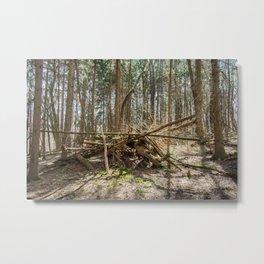 Townsend Park Wooden Pile Metal Print