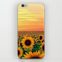 sunflower iPhone & iPod Skins featuring Sunflower by Don't Be A Dick
