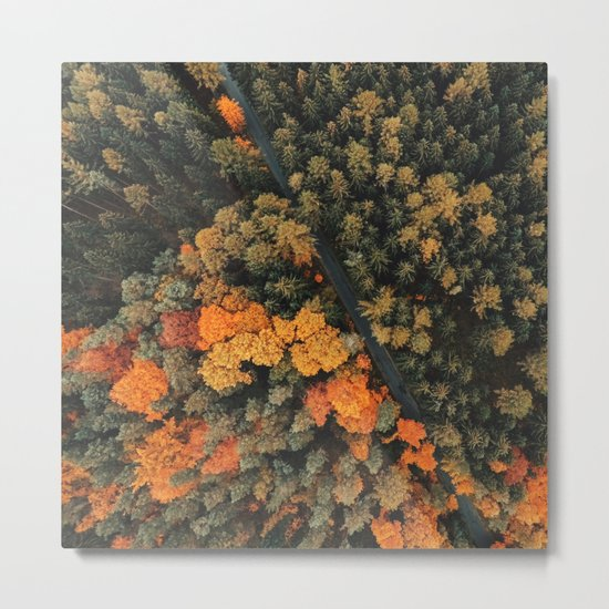 forest orange 4 Metal Print