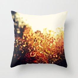 The Light Meets the Dark Throw Pillow