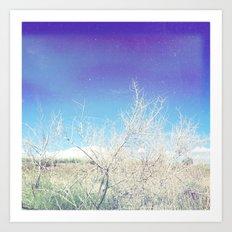 Desert 1 Art Print