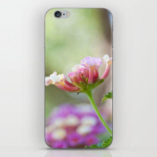 Lantana iPhone Skin