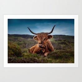 Beef Nature Art Print