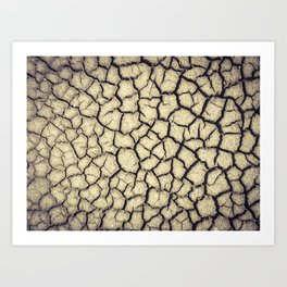 Parched land in the Regional Natural Park of Camargue Art Print