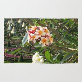 rosa Frangipane Rug