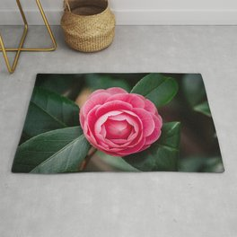 Pink Perfection Camellia Japonica Blooms in Spring Rug
