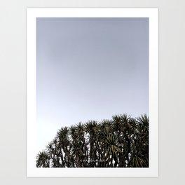 39  | Plants Photography | 200630 | Art Print