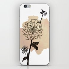 dahlias iPhone & iPod Skin