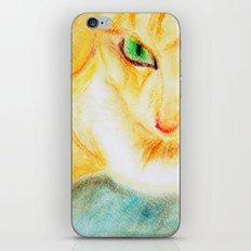 Mango Kitty iPhone & iPod Skin