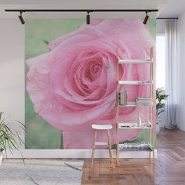 Morning Rose Wall Mural