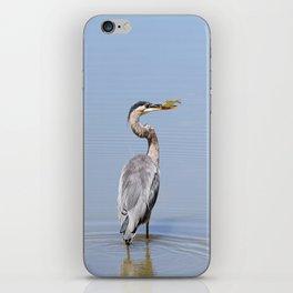 Great Blue Heron Fishing - I iPhone Skin