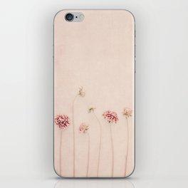 Cameo pink iPhone Skin