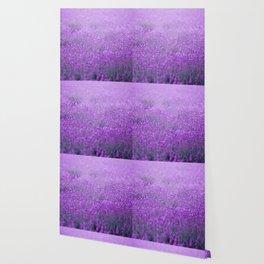 Rain on Lavender Wallpaper