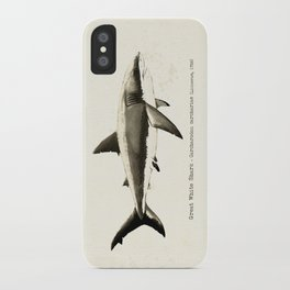 """Carcharodon carcharias II"" by Amber Marine  ~ Great White Shark Illustration, (Copyright 2015) iPhone Case"
