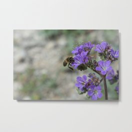 mother natures helper Metal Print