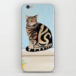 Cat sitting on window sill iPhone Skin