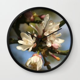 Orange Tree Flowers Wall Clock