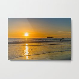 Laguna Beach Sunset Seagull Metal Print