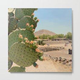 Nopales en Teotihuacan Metal Print