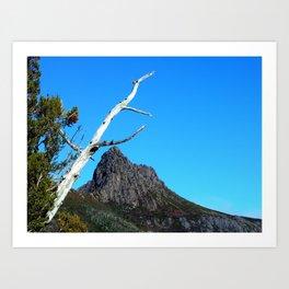 Up at Cradle Mountain Art Print