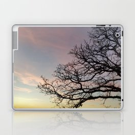Subtle savanna sunset - Pheasant Branch Conservancy Laptop & iPad Skin