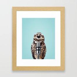 SINGING OWL Framed Art Print
