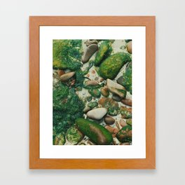 Moss-Covered Rocks in Isle of Skye, Scotland Framed Art Print