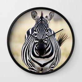 Zebra looking at you Wall Clock