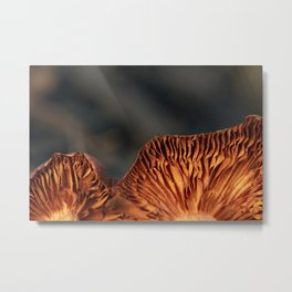 Under the Mushroom Metal Print