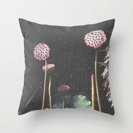 Lotus Seed Heads Throw Pillow