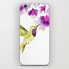 Lucifer Hummingbird iPhone & iPod Skin
